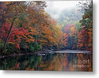 Monongahela National Forest Metal Print by Thomas R Fletcher