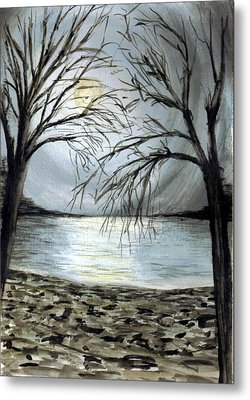 Moon Over Lake Metal Print by Terence John Cleary