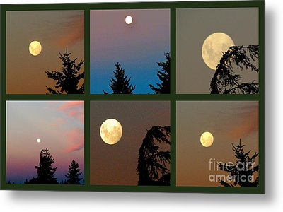 Moon Time Metal Print by Joyce Woodhouse
