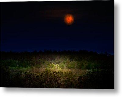 Moonglow II Metal Print by Mark Andrew Thomas