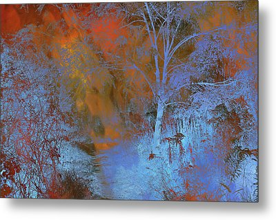 Moonlight Forest Metal Print by Jenny Rainbow