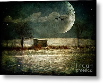 Moonstruck Metal Print by Lois Bryan