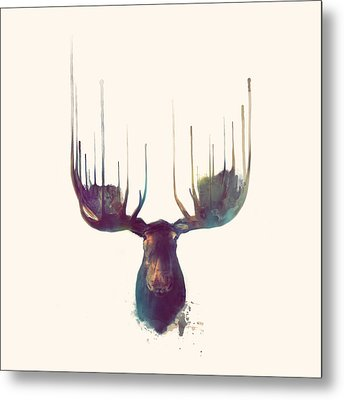 Moose // Squared Format Metal Print by Amy Hamilton