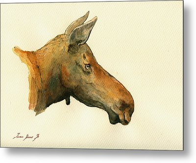 Moose Watercolor Painting. Metal Print by Juan  Bosco