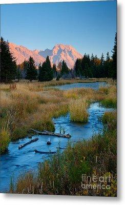 Moran Morning Metal Print by Idaho Scenic Images Linda Lantzy