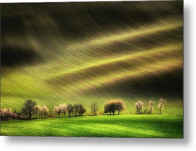 Moravian Fields Metal Print by Piotr Krol (bax)
