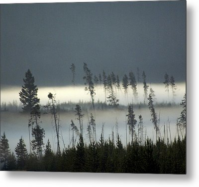 Morning Along The Madison Metal Print by Marty Koch