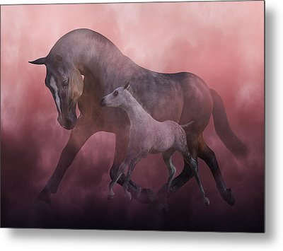 Morning And Dawn Metal Print by Betsy C Knapp