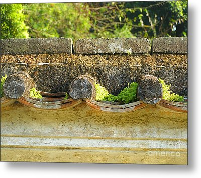 Moss On An Old Chinese Roof Metal Print by Kathy Daxon