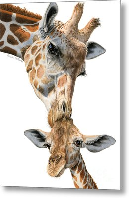 Mother And Baby Giraffe Metal Print by Sarah Batalka