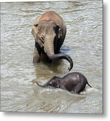 Mother And Baby Metal Print by Jane Rix
