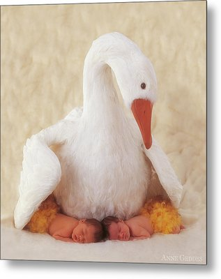 Mother Goose Metal Print by Anne Geddes