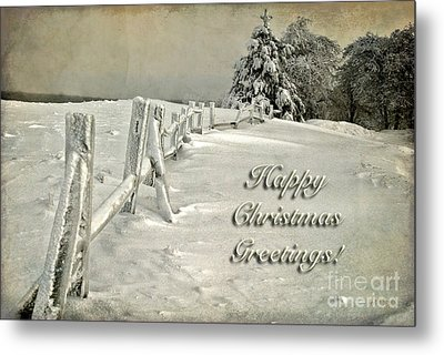Mother Nature's Christmas Tree Card Metal Print by Lois Bryan
