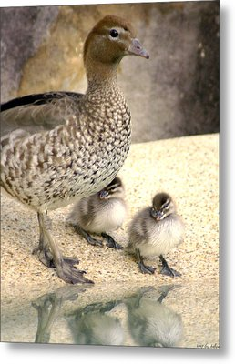 Mother Of Twins Metal Print by Holly Kempe
