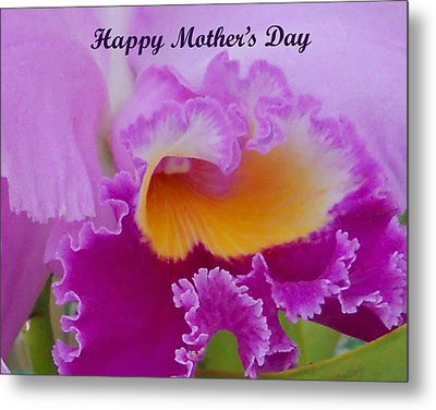 Mothers Day Metal Print by Aimee L Maher Photography and Art Visit ALMGallerydotcom