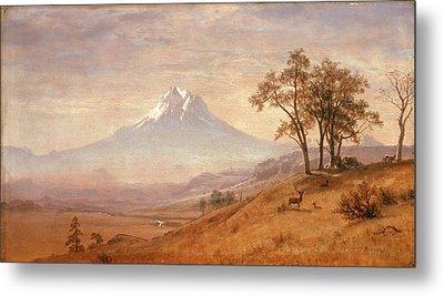 Mount Hood Metal Print by Albert Bierstadt