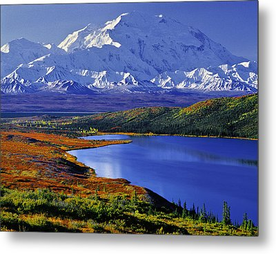 Mount Mckinley And Wonder Lake Campground In The Fall Metal Print by Tim Rayburn