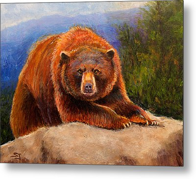 Mountain Bear Metal Print by Susan Jenkins