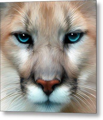 Mountain Lion Metal Print by Julie L Hoddinott