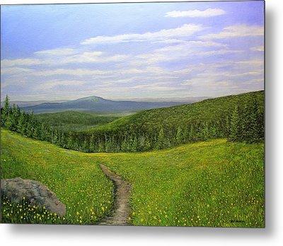 Mountain Meadow Metal Print by Ken Ahlering