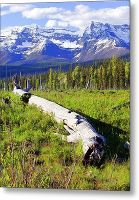 Mountain Splendor Metal Print by Marty Koch