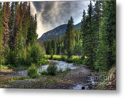 Mountain Stream 4 Metal Print by Pete Hellmann