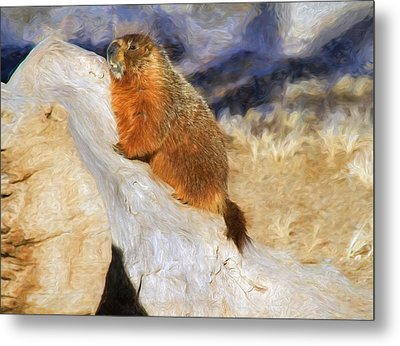 Mountains To Climb Metal Print by Donna Kennedy