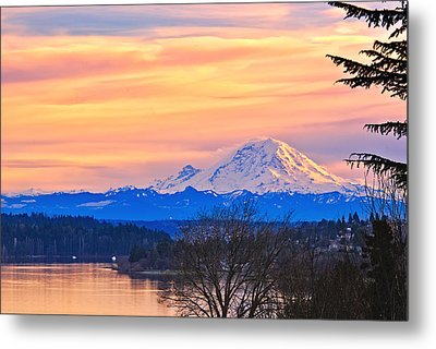 Mt Rainier From Lake Washington Metal Print by Alvin Kroon
