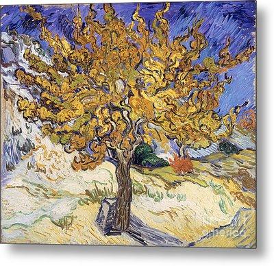 Mulberry Tree Metal Print by Vincent Van Gogh