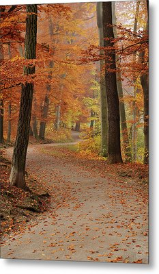Munich Foliage Metal Print by Frenzypic By Chris Hoefer