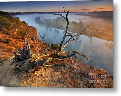 Murray River Dawn Metal Print by Bill  Robinson