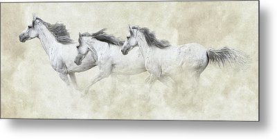 Mustang In Motion Metal Print by Ron  McGinnis
