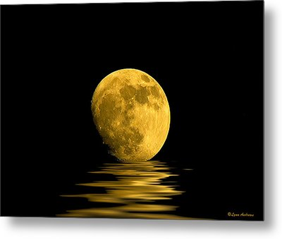 My Harvest Moon Metal Print by Lynn Andrews