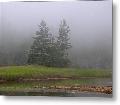 Mystical Acadia National Park Metal Print by Juergen Roth