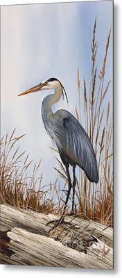 Nature's Gentle Beauty Metal Print by James Williamson