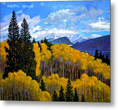 Natures Patterns - Rocky Mountains Metal Print by John Lautermilch