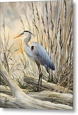 Nature's Wonder Metal Print by James Williamson