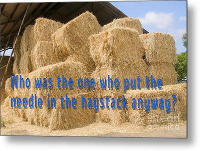 Needle In The Haystack Anyway? Metal Print by Humorous Quotes