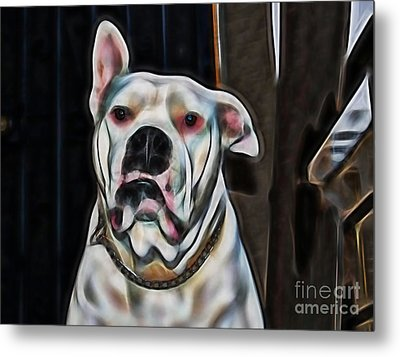 Nelson Metal Print by Marvin Blaine