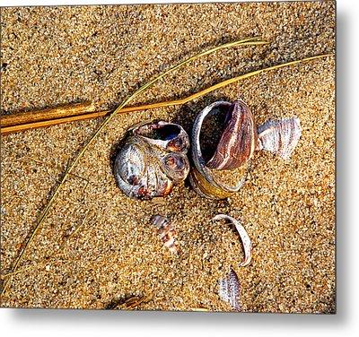 Nestled In The Sand Metal Print by Lynda Lehmann