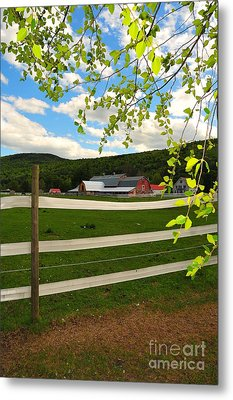 New England Farm Metal Print by Catherine Reusch  Daley