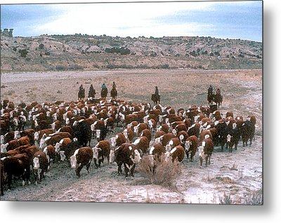 New Mexico Cattle Drive Metal Print by Jerry McElroy