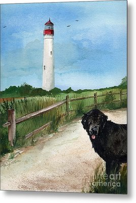 Newfy At Cape May Light  Metal Print by Nancy Patterson