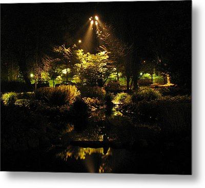 Night Garden Metal Print by Art Nomad Sandra  Hansen