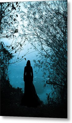 Nightfall Metal Print by Cambion Art