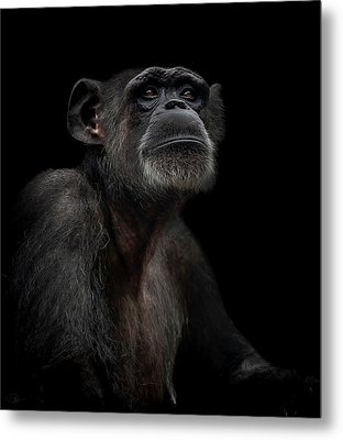 Noble Metal Print by Paul Neville