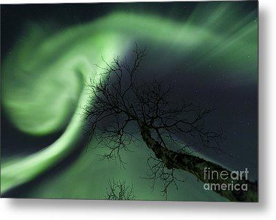 Northern Lights In The Arctic Metal Print by Arild Heitmann