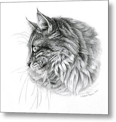 Norwegian Forest Cat Metal Print by Svetlana Ledneva-Schukina