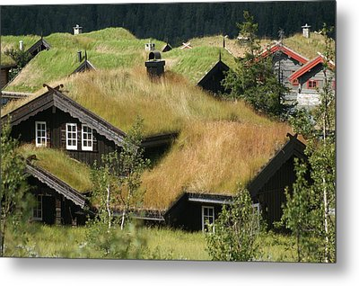 Norwegian Grass Roofs Metal Print by Jessica Rose