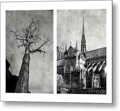 Notre Dame De Paris Metal Print by Elena Nosyreva